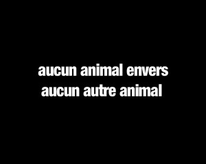 Aucun animal